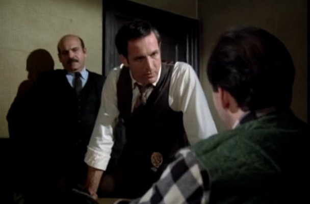 """Review: Hill Street Blues, """"The Young, the Beautiful and the ..."""