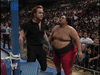 The Undertaker and Yokozuna, Royal Rumble 1994