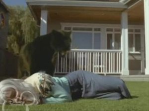 "The panther saves Annie (""Widow's Walk"")"