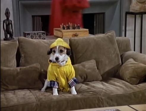 Raincoat Eddie